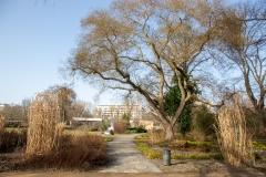 Potsdam_Freundschaftsinsel_2021_02_23_JHG-93