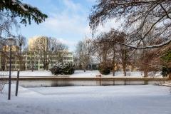 Potsdam_Freundschaftsinsel_2021_02_10_JHG-94