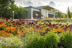 Groses-Blumenbeet_egapark-Halle-1-ega-gGmbH-S.-Nuernbergerx1200