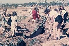 1945_ega_highlights_historie_2