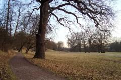 Goethe_Gartenhaus_Ilmpark_Weimar_JHG-5-2_1200